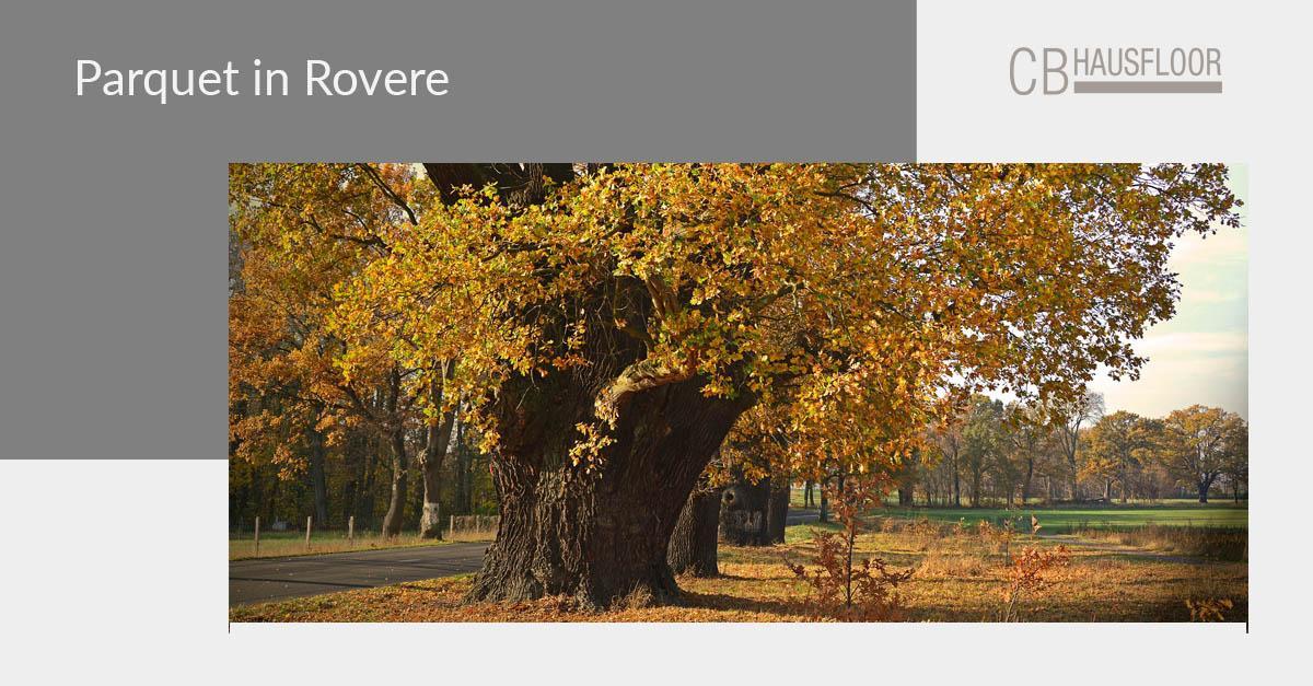 Parquet rovere: foto, esempi e sostenibilità - Hausfloor